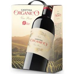Cantina Organico Vino Rosso